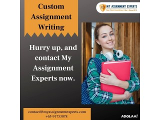 Custom Assignment Writing Service   30% Off On My Assignment Experts