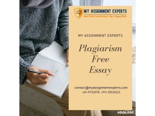 Get 100% Plagiarism Free Essay by Professional and Top Essay Writer
