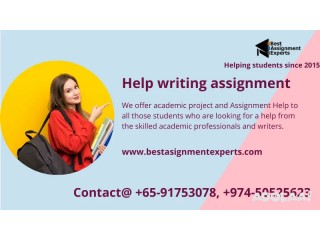 Help writing assignment