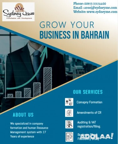 company-formation-in-bahrain-with-free-consultation-big-0