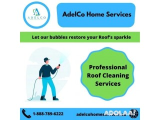 1st Choice For Roof Cleaning in British Columbia