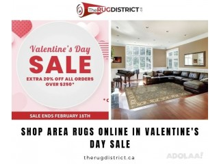 Shop Area Rugs Online in Valentine's Day Sale