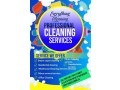 cleaning-services-in-ottawa-small-0