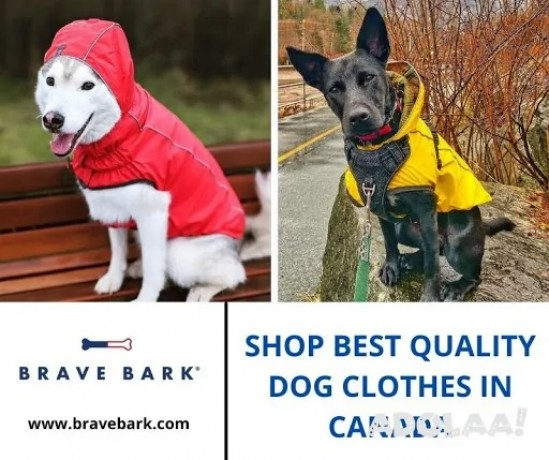 shop-best-quality-dog-clothes-in-canada-big-0