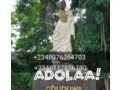 the-best-spiritual-herbalist-native-doctor-in-nigeria2348076364703-small-1