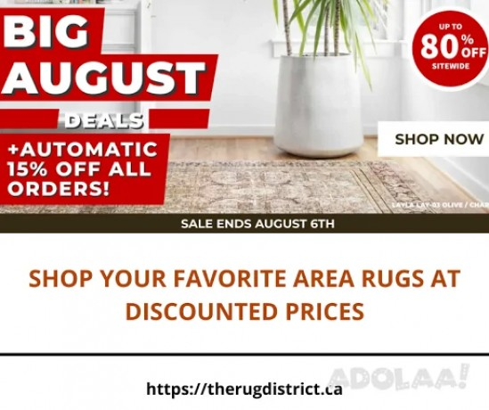 shop-your-favorite-area-rugs-at-discounted-prices-big-0