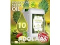 prickly-pear-oil-wholesaler-and-exporter-small-1