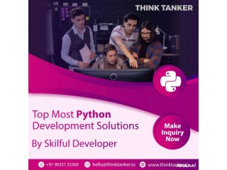 Hire Expertise Python Developers On Monthly Basis - ThinkTanker