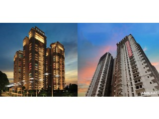 Sports Home Well-Designed Residential Venture Noida
