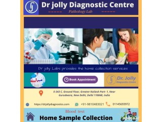 Blood Test Home Collection in Greater Kailash Delhi, Dr Jolly Lab
