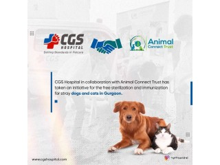 Dog and Cat Clinic | CGSHOSPITAL