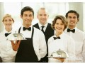 chefhotel-attendantwaiters-required-small-0