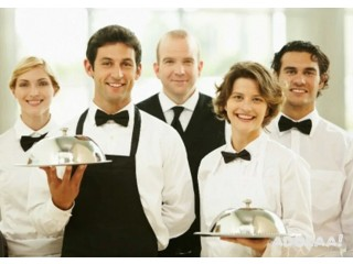 Chef,hotel attendant,waiters required