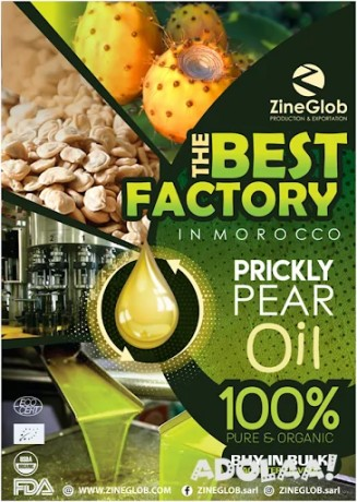 zineglob-prickly-pear-oil-wholesaler-and-exporter-big-1