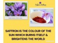 um-research-shows-promising-future-for-malaysian-saffron-small-0