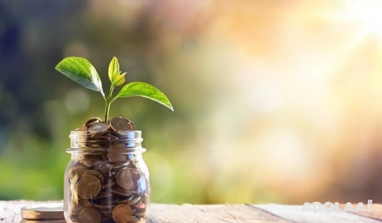 startup-your-business-at-3-rate-loan-apply-now-big-0