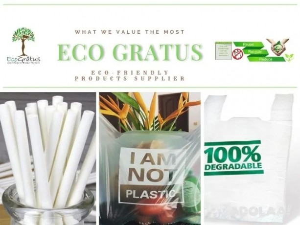 eco-friendly-products-supplier-in-malaysia-ecogratus-big-0