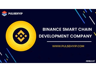 BEP-20 Token Development on Binance Smart Chain - Pulsehyip