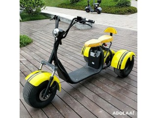 High Quality 60v Citycoco 3 Wheel Electric Scooter Fast Delivery Supplier