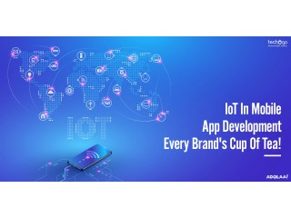 What Is The Key To Successful IoT App Development!