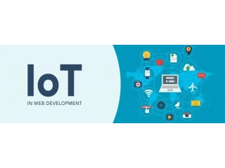 Top Notch IoT Application Development Company in the USA