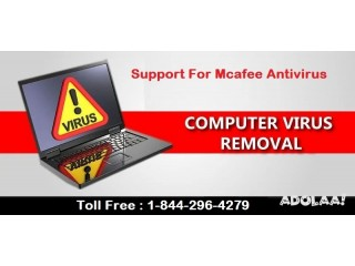 Wwwmcafeecom/activate | mcafeecom/activate | McAfee Toll Free Number