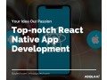 top-react-native-app-development-company-in-usa-small-0