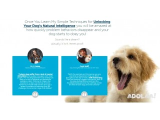 Brain Training For Dogs - Unique Dog Training