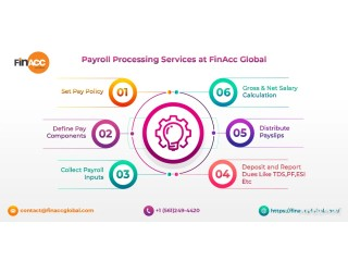 Payroll Processing Services at FinAcc Global
