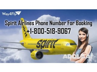 Airfare Sale on Spirit Airlines Reservations by Way4Fly | +1-800-518-9067|
