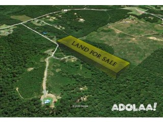 10 Acres Vacant Land Close to Jasper – Walker County Alabama