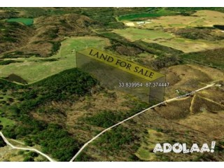 Great 3 Acres Residential Lot For Sale Just Outside of Jasper Alabama