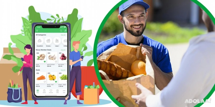 scale-your-business-with-a-top-notch-instacart-clone-big-0