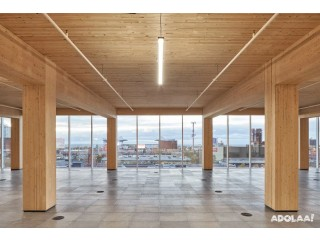 Mass Timber Buildings | Silicon EC Ltd.