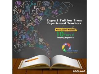Meet Focal Tutor Professors Teach and Learn Online