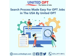 United OPT hunts the best OPT job placements for you.