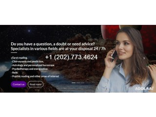 Tarot card reading, Reiki therapy, Astrology, Psychic Reading..