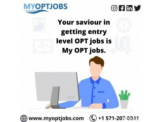 Are you tired of perceiving entry level OPT jobs?