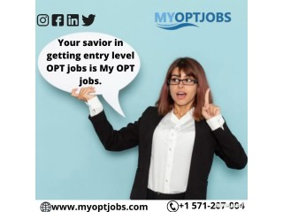 Your savior in getting entry level OPT jobs is My OPT jobs.