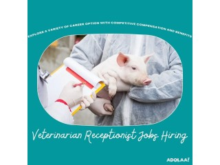 Veterinarian Job Seeker