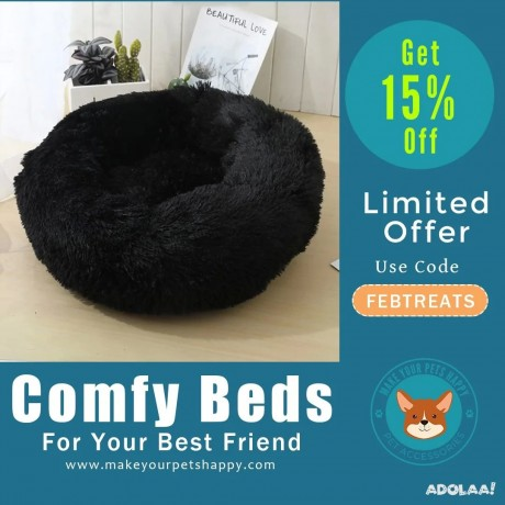 comfy-beds-for-your-best-friends-big-0