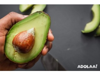 Buy Organic Avocados for great Health
