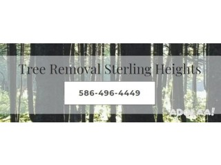 Tree Removal Sterling Heights