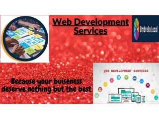 Make your business website all conquering one with best web development services in the US