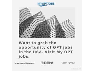 Want to grab the opportunity of OPT jobs in the USA. Visit My OPT jobs.