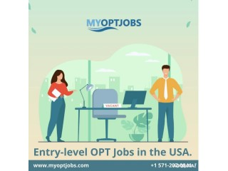 Entry-level OPT Jobs in the USA.