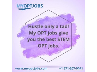 Hustle only a tad! My OPT jobs give you the best STEM OPT jobs.