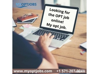 Searching for theOPT job online!My opt job.