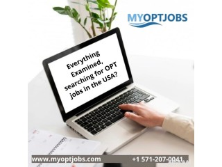 Everything Examined, searching for OPT jobs in the USA?