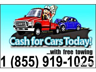 Cash for Your Car 1 (855) 919-1025 FREE TOWING